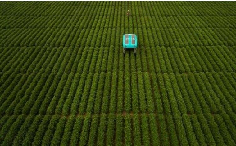 Google Çiftçilerin Yanında