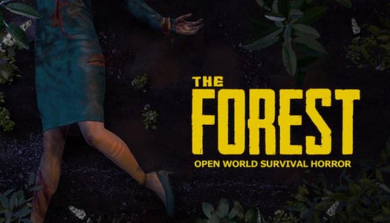 2 Kişilik Savaş Oyunları The Forest