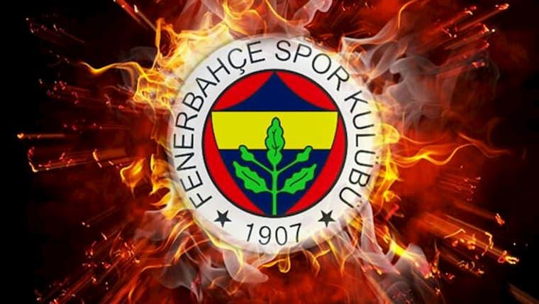 Fenerbahçe Token'a İnanılmaz Talep Oldu